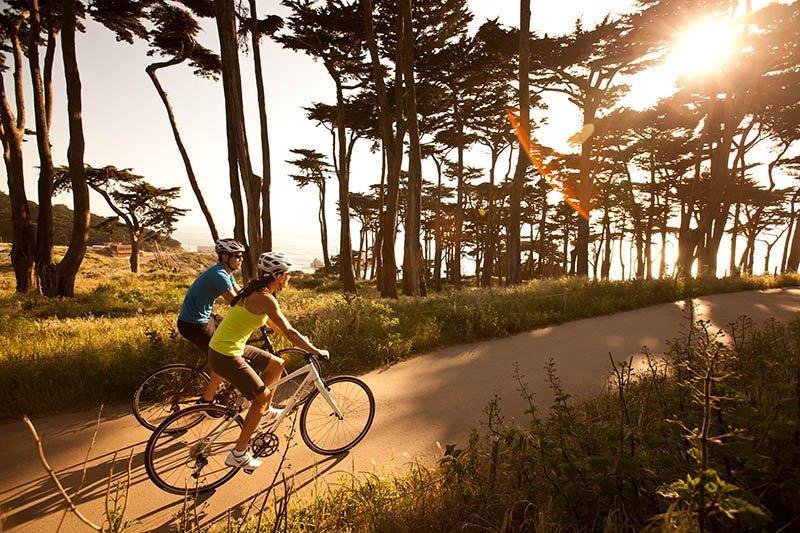 Singlespeed Bikes Shop | bei ilahi-tr.org gnstig